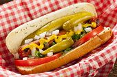 stock photo of pickled vegetables  - Chicago Style Hot Dog with Mustard Pickle Tomato Relish and Onion - JPG