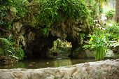 foto of arum  - Ornamental pond and rock wall with lush greenery and flowering white arum lilies in a formal garden - JPG