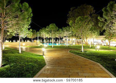 The Trees In Night Illumination At Luxury Hotel, Halkidiki, Greece