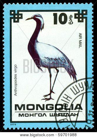 Vintage  Postage Stamp. Demoiselle Crane.