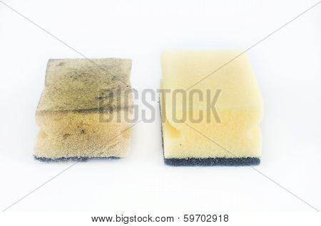 Dish Washing Sponges