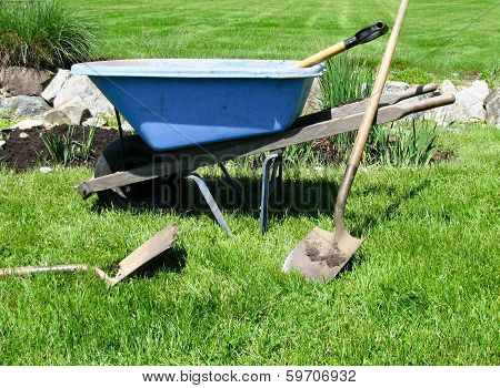 Blue wheelbarrow and gardening tools on green lawn