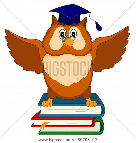 An Owl Sits On The Books