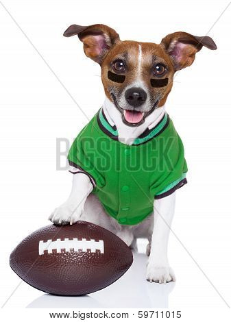 Rugby Dog