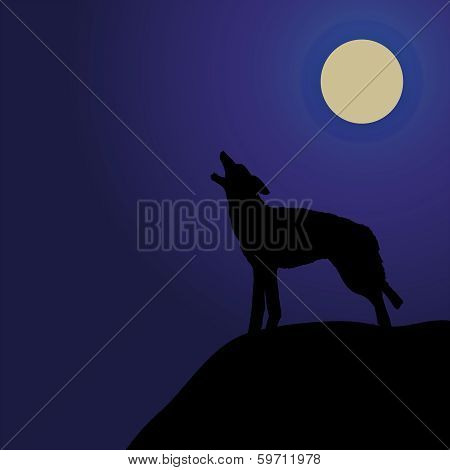 Wolf Howeling In The Moonlight