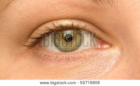 woman eye with the symbol of Euro on pupil