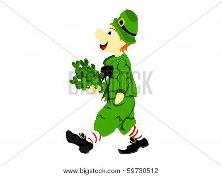 Leprechaun Walk Clover
