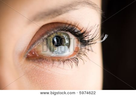 Picture Of Woman's Eye With Long Eyelashes