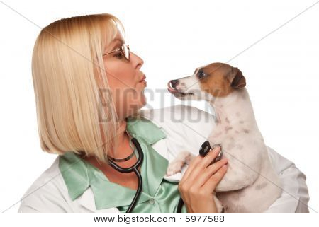 Attractive Female Doctor Veterinarian With Small Puppy