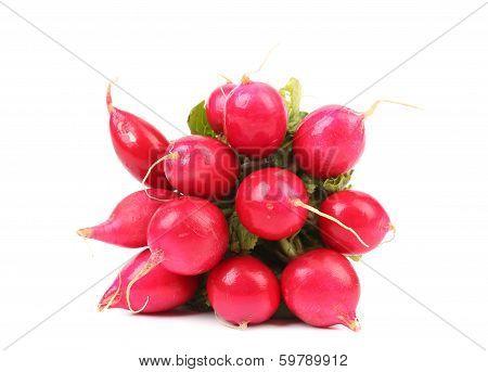 Small garden radish.