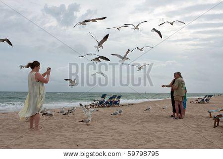 Seagulls Swarm Around Family Taking Photo On Beach