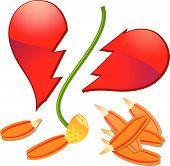 pic of broken heart flower  - Daisy flower with broken petals and broken shape of heart vector - JPG