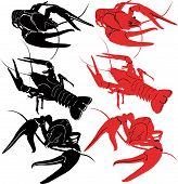 stock photo of mites  - crayfish animals vector isolated fauna armor shrimp - JPG