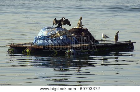 Trash barge, Istanbul, Turkey