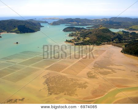 Mussel/oyster Beds In Whangaroa Harbour, New Zealand. Town Of Whangaroa Is Central And Motu Wai Isla