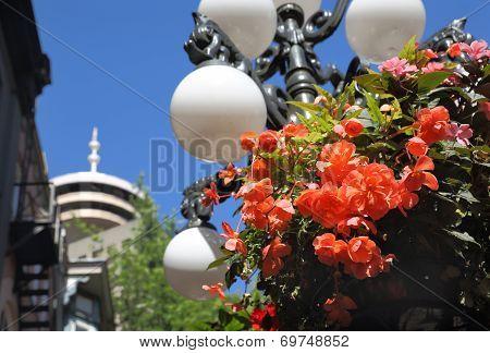 Gastown Flower Basket, Vancouver