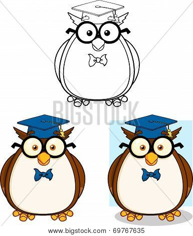 Wise Owl Teacher Cartoon Character 2. Collection Set