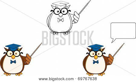 Wise Owl Teacher Cartoon Character 3.Collection Set