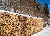 stock photo of firewood  - Firewood stacked in winter - JPG