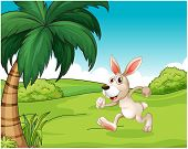 stock photo of hilltop  - Illustration of a bunny running at the hilltop on a white background - JPG