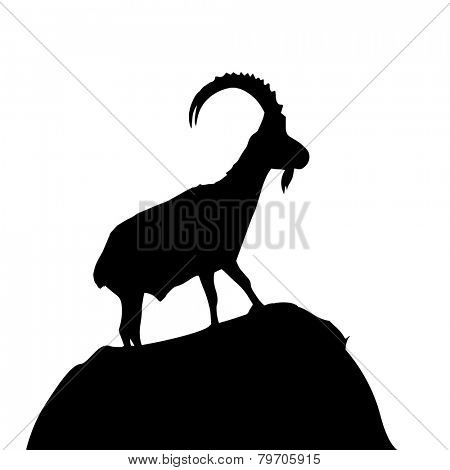 detailed illustration of a goat climbing up a hill, eps10 vector