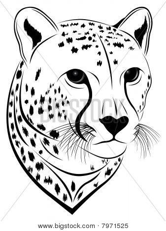 Cheetah, tattoo