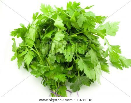 Bunch Of The Parsley
