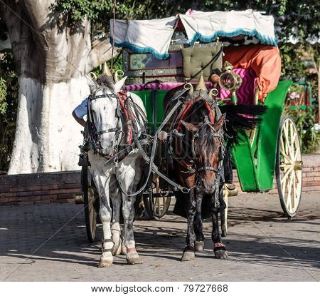 Horst drawn carriage