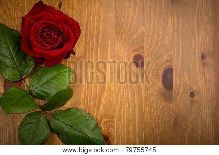 Rose And Leaf On Wood Backgound