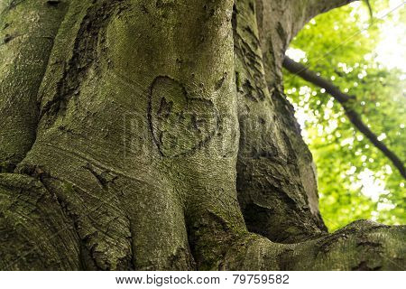 Trunk Engraved With Hearts And Initials