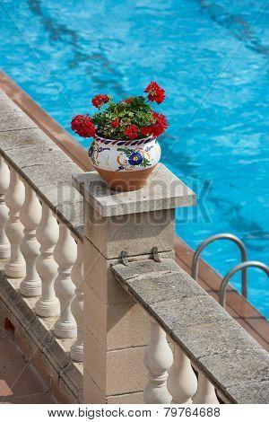 Red Pelargonium Flower In Flowerpot On Bright Blue Water Background.