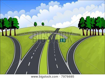 highway in the summer landscape