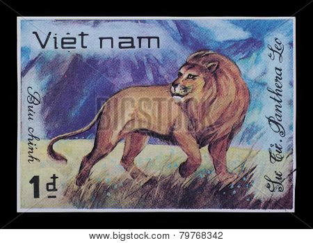 Post Stamp. Panthera Leo