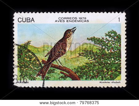 Post Stamp. Birds - Cuban Solitaire