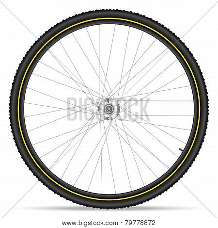 Mountain Bike Wheel