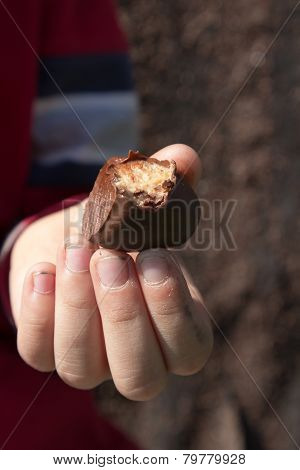 Chocolate Candy In The Hands