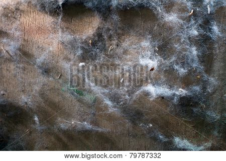 Background Of Old Pieces Of Fur On A Wooden Surface