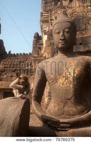 Monkey sitting on Ancieng Buddha In Phra Prang Sam Yod Temple,Thailand.
