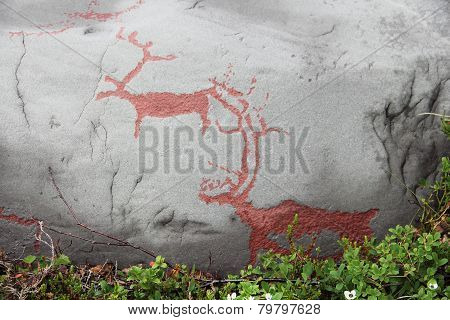 Rock Carvings At Alta