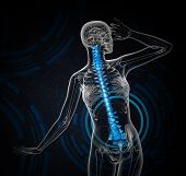 picture of spines  - 3d render medical illustration of the human spine  - JPG