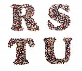 picture of letter t  - Letter set made of mixed peppercorns  - JPG