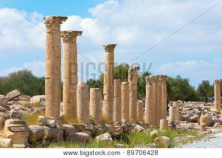 Ancient Ruin At Umm Qais In Jordan