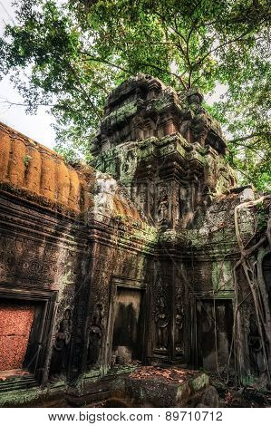 Ta Prohm Temple With Giant Banyan Tree. Angkor Wat, Cambodia