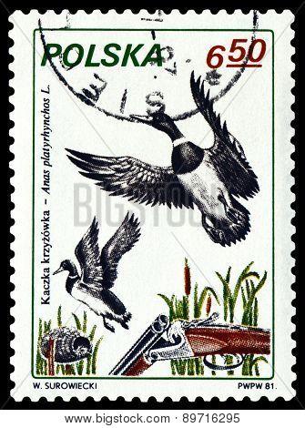 Vintage  Postage Stamp. Bird Fen Duck.