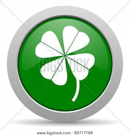 four-leaf clover green glossy web icon
