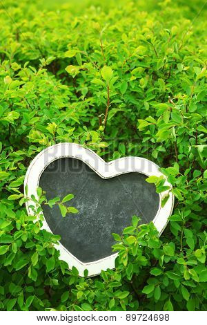 Photo frame over green bush background