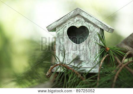 Decorative nesting box on branch, on green background
