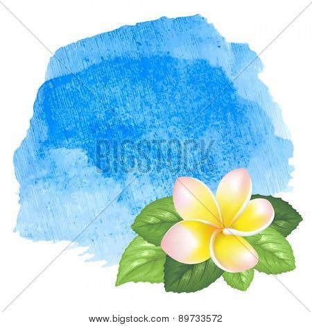 Blue sea ocean fresh watercolor background with exotic tropical flowers frangipani. Isolated on white background.