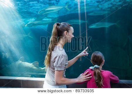 Happy mother and daughter looking at tank at the aquarium