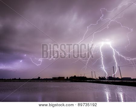 Lightnings over flooded rice fields